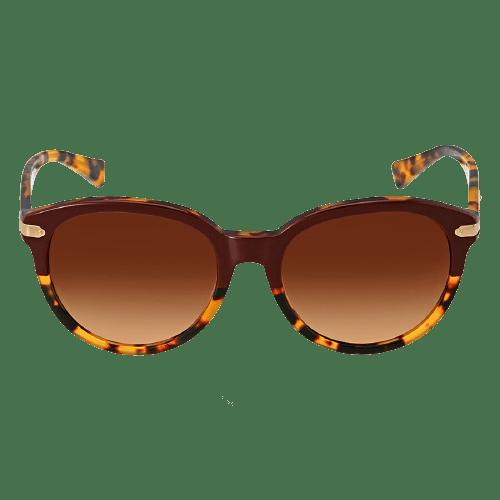 coach brown gradient sunglasses hc8140 543713 55 removebg preview